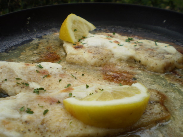 Steamed fish with sour cream sauce recipe for Creamy sauce served with fish