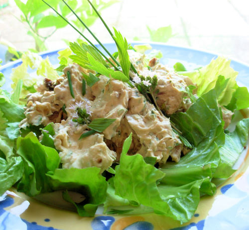 Chicken Salad In A Creamy Chive And Lovage Dressing Recipe ...