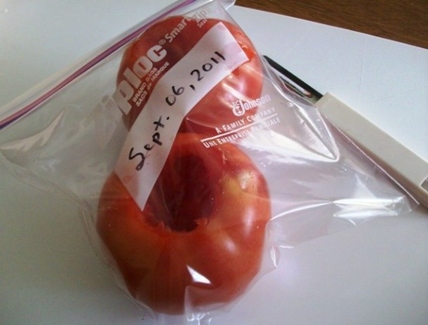 Frozen Garden Tomatoes For Winter Soups And Sauces Recipe