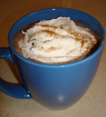 Chai-Spiced Hot Cocoa Recipe - Food.com
