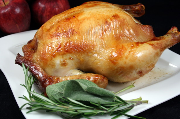 America S Test Kitchen Recipes Turkey Brine