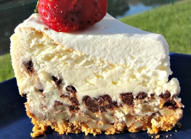 Basset Hound Cheesecake Recipe Food Com