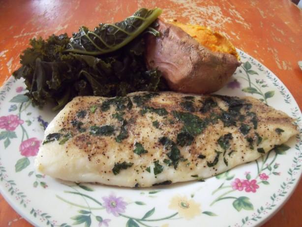 Recipe For Making Saltwater Fish Food