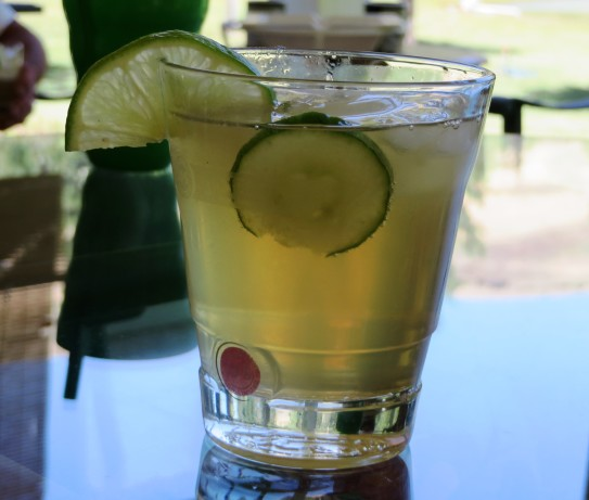 Cucumber Gin Spritzers Recipe - Food.com