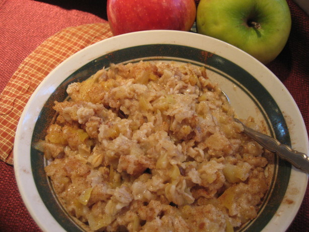 Fluffy Apple Cinnamon Oatmeal Recipes — Dishmaps
