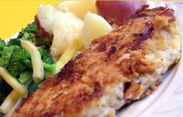 Red snapper parmigiana recipe for Snapper fish recipes