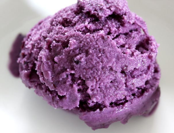 Blueberry Ice Cream Recipe - Food.com