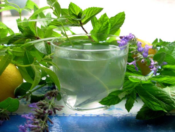 Lemon Verbena And Mint Tea - French Verveine And Mint Tisane Recipe ...