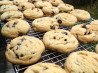 Classic Chocolate Chip Cookies. Recipe by Nurse_Corie