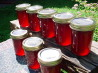 Fireweed Jelly. Recipe by GakonaBaby