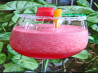 Watermelon Sensation Libation. Recipe by Bev