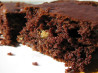 Skinnier Moist Chocolate Snack Cake. Recipe by SusieQusie