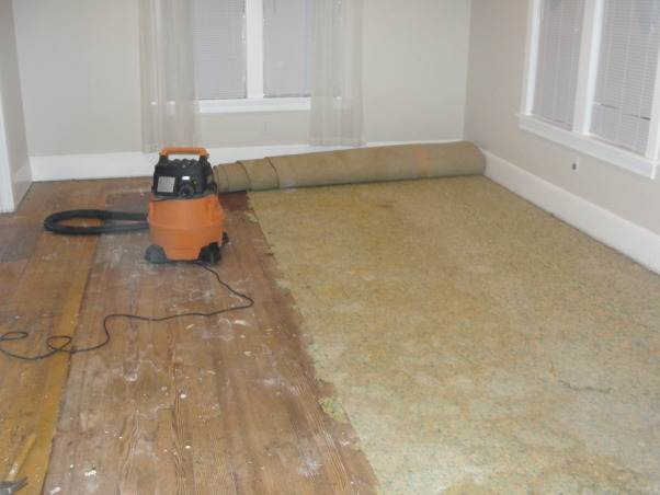 Refreshed living, Removing old 30 yr old carpet, Living Rooms Design