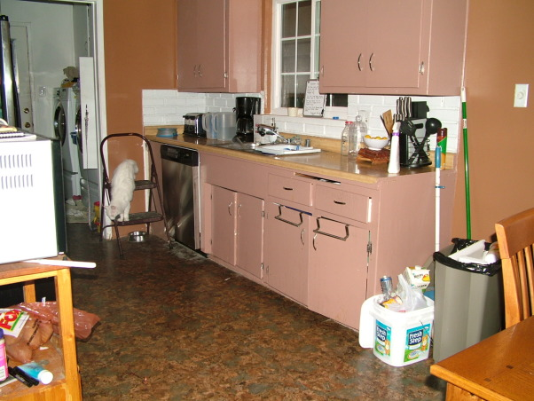 1959 galley kitchen, 1959 Small Galley Kitchen in need of your help, has a bit of cabinets in only one side of the room, I love cooking but don't have any space for mixing and cutting, I fear that my house is becoming very dark. Need help!, Kitchens Design