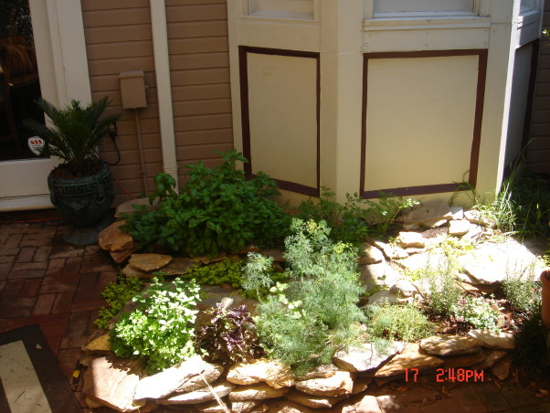 small patio oasis, prior to last summer this space was only brick and mud destroyed by our dog. We attepted to transform it into a retreat for family and friends. the cover is a poly-plastic type cover that is porous and rain can go through. I bought it from target on line. the screen is not anchored but free standing like any indoor screen would be., herb garden-path to spigot-herbs that spread voraciously I planted in pots then in the ground to keep from being evasive.    , Patios & Decks Design