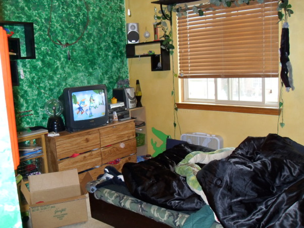 Pre-teen modern bedroom, Modern color splash boys space that will last for years., Jungle bedroom from age 6-10 watch for dresser makeover in new room, Boys' Rooms Design