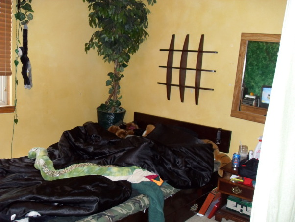 Pre-teen modern bedroom, Modern color splash boys space that will last for years., jungle  room , Boys' Rooms Design