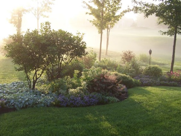Fog in the garden, Golf course garden in the fog, Gardens Design