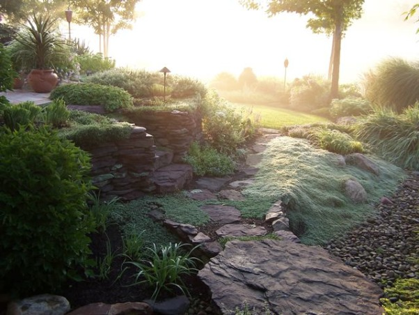 Fog in the garden, Golf course garden in the fog, A few years ago in August we had an early morning fog settle in the low spots of the garden. The bluish ground cover is creeping wooly thyme and the effect is like water spilling into a dry creek bed., Gardens Design