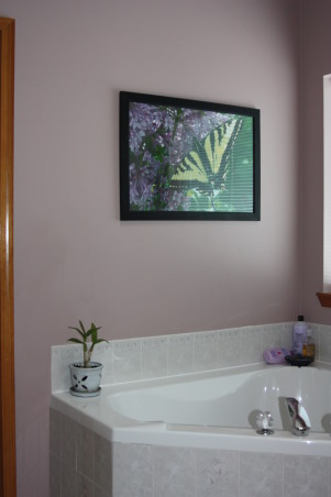 Eggplant and Sage Master Suite, Our master suite has dark purple (eggplant) wall color with a lighter purple in the adjoining master bath.  I accented with pops of sage green., My own photo above the huge garden tub, Bedrooms Design