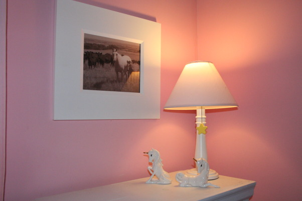 Pink Horse Room, Pink and white girls bedroom. Hand painted horses on the wall., Corner lamp. I picked up the horses at an antique store. The horses are a photo I had taken in North Dakota.  , Girls' Rooms Design
