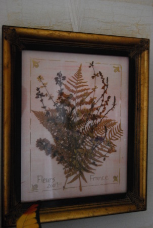 A Whisper of Lavender, I wanted this to have French flair!! , These are actual flowers I picked in France.... when we got home, I framed them., Girls' Rooms Design