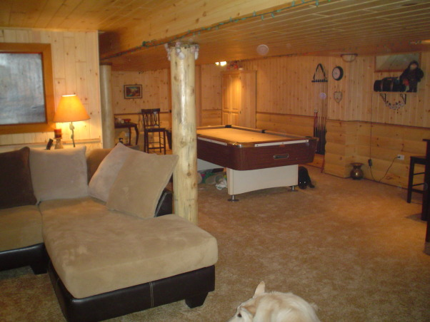 in the city we made a log cabin in our basement basements design
