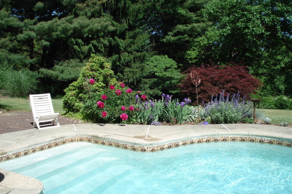 Love my garden, This is my playground!  It has been developing for the past 23 years from a nondescript property., Our pool is a pleasure in the summer., Gardens Design