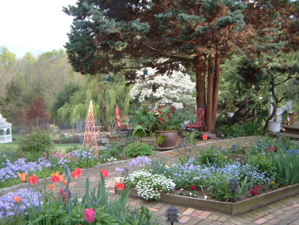 Love my garden, This is my playground!  It has been developing for the past 23 years from a nondescript property., My secret garden in the spring, Gardens Design