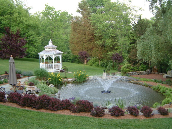 Love my garden, This is my playground!  It has been developing for the past 23 years from a nondescript property., A half circle of dwarf barberries accentuates to koi pond., Gardens Design