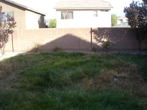 Bland Backyard, Just bought our first home and it has your typical boring tract home feel.  Although it's landscaped, it's not done well.  Want to add a patio covering and more privacy (we can see into the neighbors kitchen!!).  I would love like a mediterranean or moroccan lounge-like escape. Oh and it's Las Vegas-so would like desert friendly yard!!  Rate this so we can get on the show!!! :), Patios & Decks Design