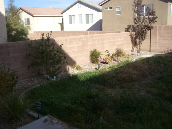 Bland Backyard, Just bought our first home and it has your typical boring tract home feel.  Although it's landscaped, it's not done well.  Want to add a patio covering and more privacy (we can see into the neighbors kitchen!!).  I would love like a mediterranean or moroccan lounge-like escape. Oh and it's Las Vegas-so would like desert friendly yard!!  Rate this so we can get on the show!!! :), this wall is too low...can easily see into neighbors yard..., Patios & Decks Design