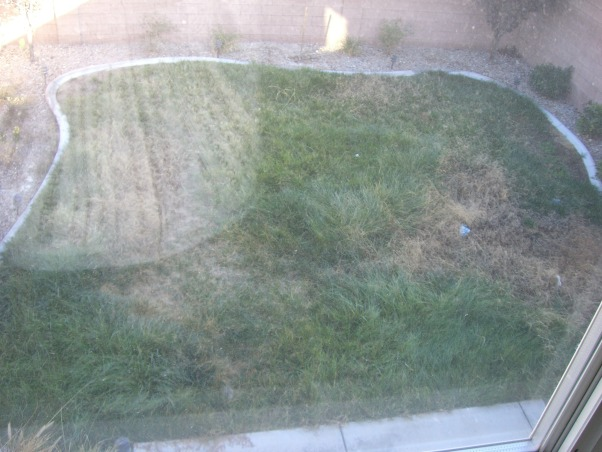 Bland Backyard, Just bought our first home and it has your typical boring tract home feel.  Although it's landscaped, it's not done well.  Want to add a patio covering and more privacy (we can see into the neighbors kitchen!!).  I would love like a mediterranean or moroccan lounge-like escape. Oh and it's Las Vegas-so would like desert friendly yard!!  Rate this so we can get on the show!!! :), view from our master bedroom  , Patios & Decks Design