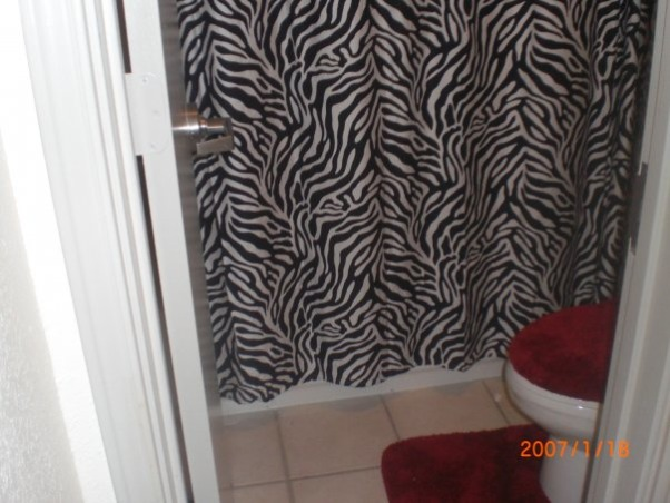 Couldn t imagine sharing a room with another person zebra and red