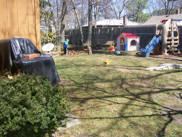 Please Help My Yard, As you can see we need help!  Here are pictures of my back and side yards.  We have an old cottage and no front door or back door, there is a door on each side of the house. With the deck and patio being on the side of the house thats where people usually gather but it's tight. I want to make the back yard inviting and relaxing to be in. Money is tight in these times and we do want to do the work on our own so we're looking for inexpensive projects. I'm sure you all will come up with ideas that we're just not thinking of!  Thank you!!, The back yard    , Yards Design