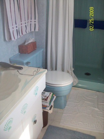 Hubby's small bathroom, Small 3/4 bath..Went from light blue to chocolate brown, White vanity and blue toilet , Bathrooms Design