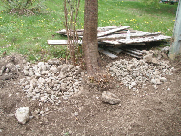 Backyard Dirt-scape Help, We need help and/or ideas!   We purchased our house 1 year ago and the backyard was a total disaster! Our yard is only 500 sq ft (+-) but we knew it was going to be a choir to clean it up. The yard consisted of overgrown with weeds, black berries and bushes. As we began our attempt to reclaim this area we found that we were in far over our heads. The ground was cement hard and filled with rocks and trash! We rented a rototiller to try to mix up the clay/dirt to bring the rocks and trash to the top. After rototilling we began digging and sifting by hand to try to get all the rocks and trash out. We also built a fence and just had our deck finished. We were so excited to have a blank slate, but now that all the work is done, we don't know what to do with it. That is where we are left today.... Tired, sore, and losing hope. We are trying to make our space a useable area that we can enjoy with our small dog, family and friends. Any suggestions please help!  , Rocks, rocks, and more rocks!       , Yards Design