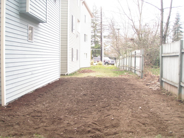 Backyard Dirt-scape Help, We need help and/or ideas!   We purchased our house 1 year ago and the backyard was a total disaster! Our yard is only 500 sq ft (+-) but we knew it was going to be a choir to clean it up. The yard consisted of overgrown with weeds, black berries and bushes. As we began our attempt to reclaim this area we found that we were in far over our heads. The ground was cement hard and filled with rocks and trash! We rented a rototiller to try to mix up the clay/dirt to bring the rocks and trash to the top. After rototilling we began digging and sifting by hand to try to get all the rocks and trash out. We also built a fence and just had our deck finished. We were so excited to have a blank slate, but now that all the work is done, we don't know what to do with it. That is where we are left today.... Tired, sore, and losing hope. We are trying to make our space a useable area that we can enjoy with our small dog, family and friends. Any suggestions please help!  , Finally cleared....       , Yards Design