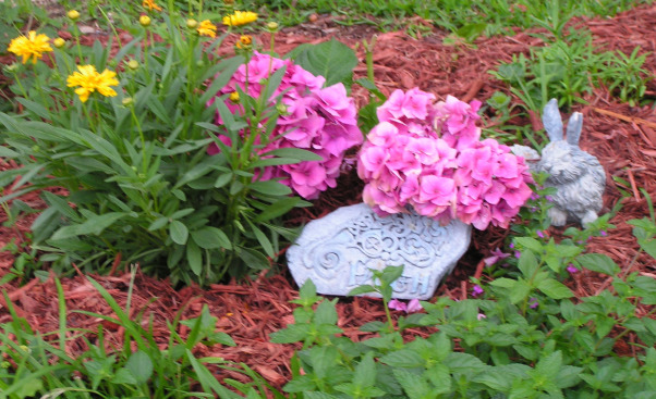 "It's Raining, It's Pouring No One Is Snoring!, With all the thunder no one could sleep! :)  We sure are Praising God for the rain here in Texas, Texas size storm clouds, rain, flowers, backyard patio ""He controls the wind and the waves""  Matthew 8:28   , Hydrangea - :) Near our Faith Rock! , Yards Design"