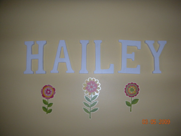 shared toddler & baby room, Bedroom shared by my 3 year old and 10 mo old, Hailey's side of the room is Dora and Flowers. Oliver's side is classic winnie the pooh, though his crib is still in mommy and daddy's room., Nurseries Design