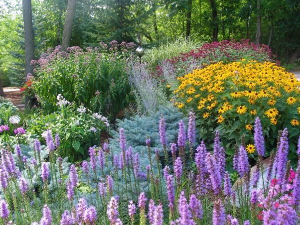 Pleasant view gardens, Waterfalls and ponds amongst the perennial gardens, My minnesota garden in full bloom.  Liatris, black eyed susan, Joe Pye weed, russian sage, white phlox, red bee balm, variegated grass                            , Gardens Design