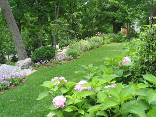 Pleasant view gardens, Waterfalls and ponds amongst the perennial gardens, endless summer hydrangea                          , Gardens Design