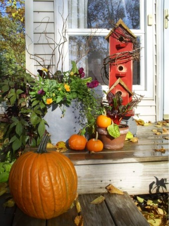 My Small Front Porch , I have a very small from porch with a small flower garden in front., Fall porch decor       , Porches Design