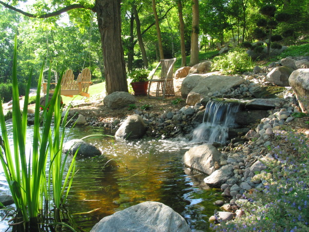 Pleasant view gardens, Waterfalls and ponds amongst the perennial gardens, waterfall into second pond                           , Gardens Design