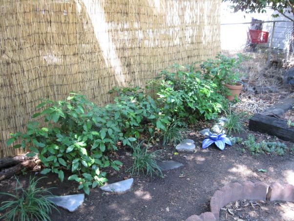 Pet Memorial Garden Ideas - Bestsciaticatreatments.com