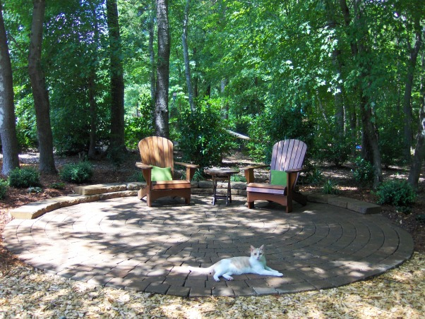 Patio in the Woods, I finally planted some dwarf yaupon, ajuga and variegated ornamental grass. Finding a deal on a fire pit would complete this area....And if we could only get rid of the mosquitoes!  , Landscaping