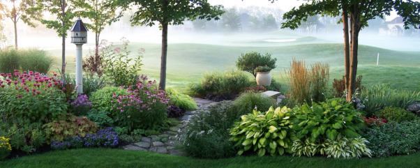 foggy golf course garden, Gardens look so different at different times of day and every once in a while the cat wakes me up early. Often, fog  gathers on the course to form a beautiful backdrop., If you look carefully at the hosta on the right (actually 3 Guacamole hostas grouped) the tips of the flower stems on half of the stalks were nibbled off by deer the night before. I love Guacamole because it doesn't burn out in the sun and the blossoms are the most fragrant I've come across. I think the deer liked the way they smelled to.  , Gardens Design