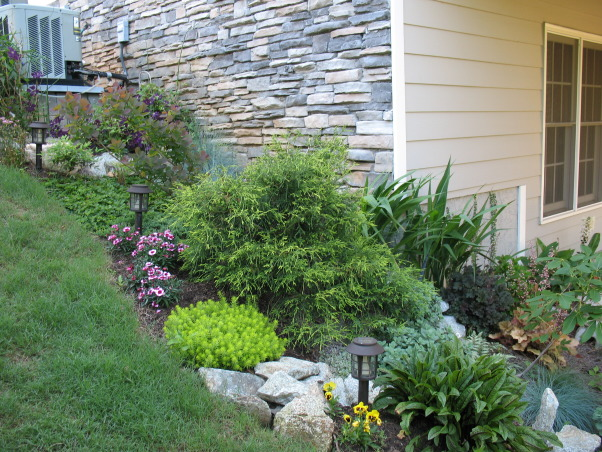 Shade plants under deck : Shade garden there was some space under our deck where the