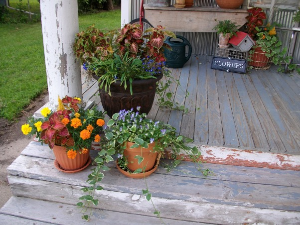 Super Sweet Space, My front porch is lined with galvenized steel and beautifully accented with containers of flowers. Weather worn wood makes it look all the more welcoming., Bloom away., Porches Design