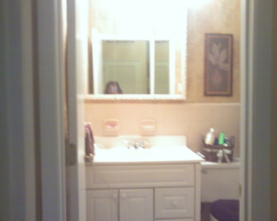 Information about rate my space questions for for Hallway bathroom ideas